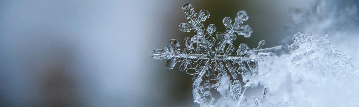 Frostkrystall